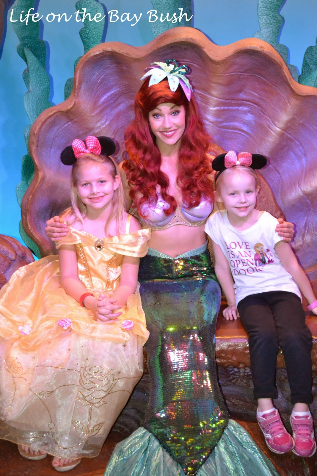 Meeting Ariel at the Magic Kingdom