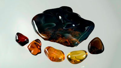 Pictures: Types of Amber