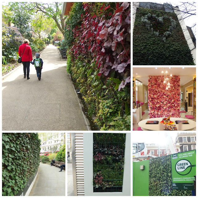 Some of the green wall surprises I found in London