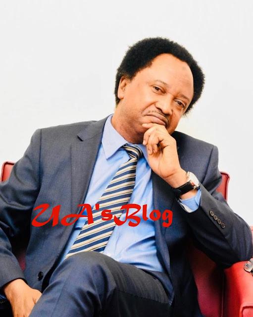 Sen. Shehu Sani Reacts To 'Jibril El Sudan' Saga, Makes Another Revelation