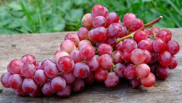 health benefits of grape fruits