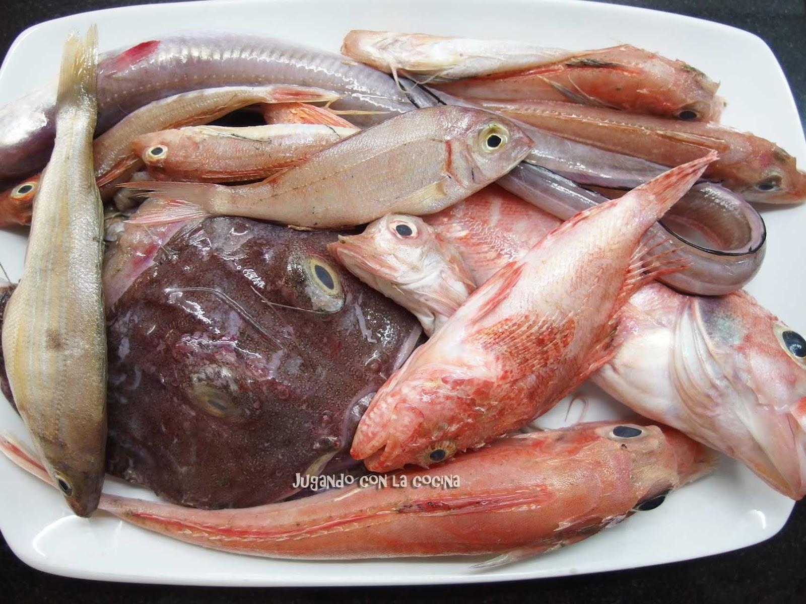 Jugando con la cocina fumet o caldo de pescado de ferran for Ferran adria comida