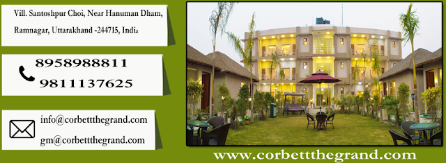 resorts in corbett national park