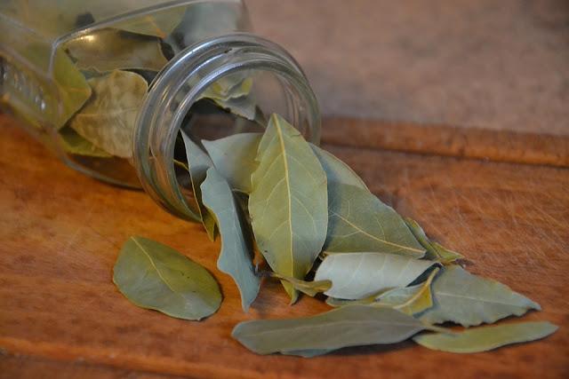 Obat Asam Urat Alami daun salam dan daun sirsak