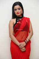 Aasma Syed in Red Saree Sleeveless Black Choli Spicy Pics ~  Exclusive Celebrities Galleries 072.jpg