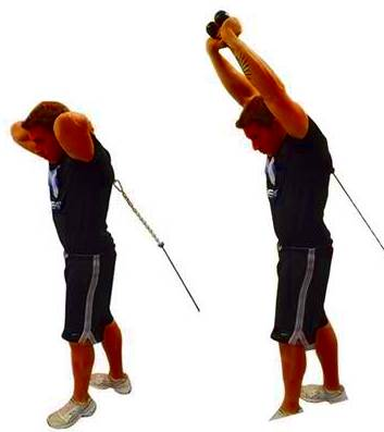 Pull over arm extension, standing, with pulley
