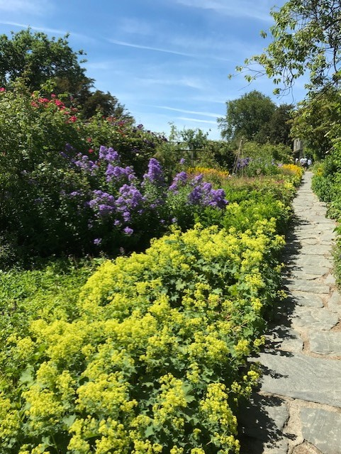 Flower boarder full of blooms with a stone path alongside of it