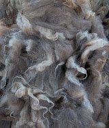 Ouessant Wool 101