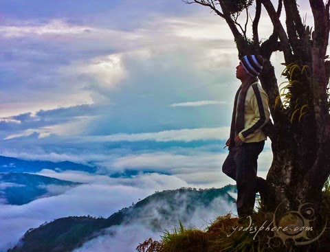 Amazing sea of clouds and the summit of Mt. Ugo in Benguet hover_share