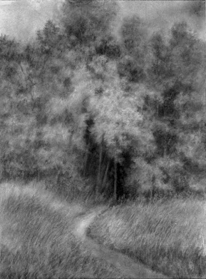 art drawing charcoal nature forest black and white