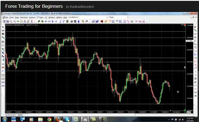 Profitable forex strategy for beginners