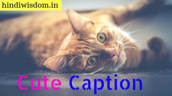 90+ Ideas For Cute Caption