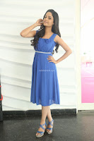 Divya Nandini stunning Beauty in blue Dress at Trendz Exhibition Launch ~  Celebrities Galleries 045.JPG