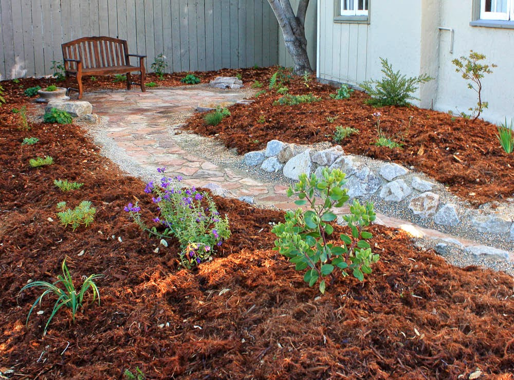 Leave E For The Size Of Plants You Can Fill In With Some Shorter Lived If Don T Like Brown Mulch Look