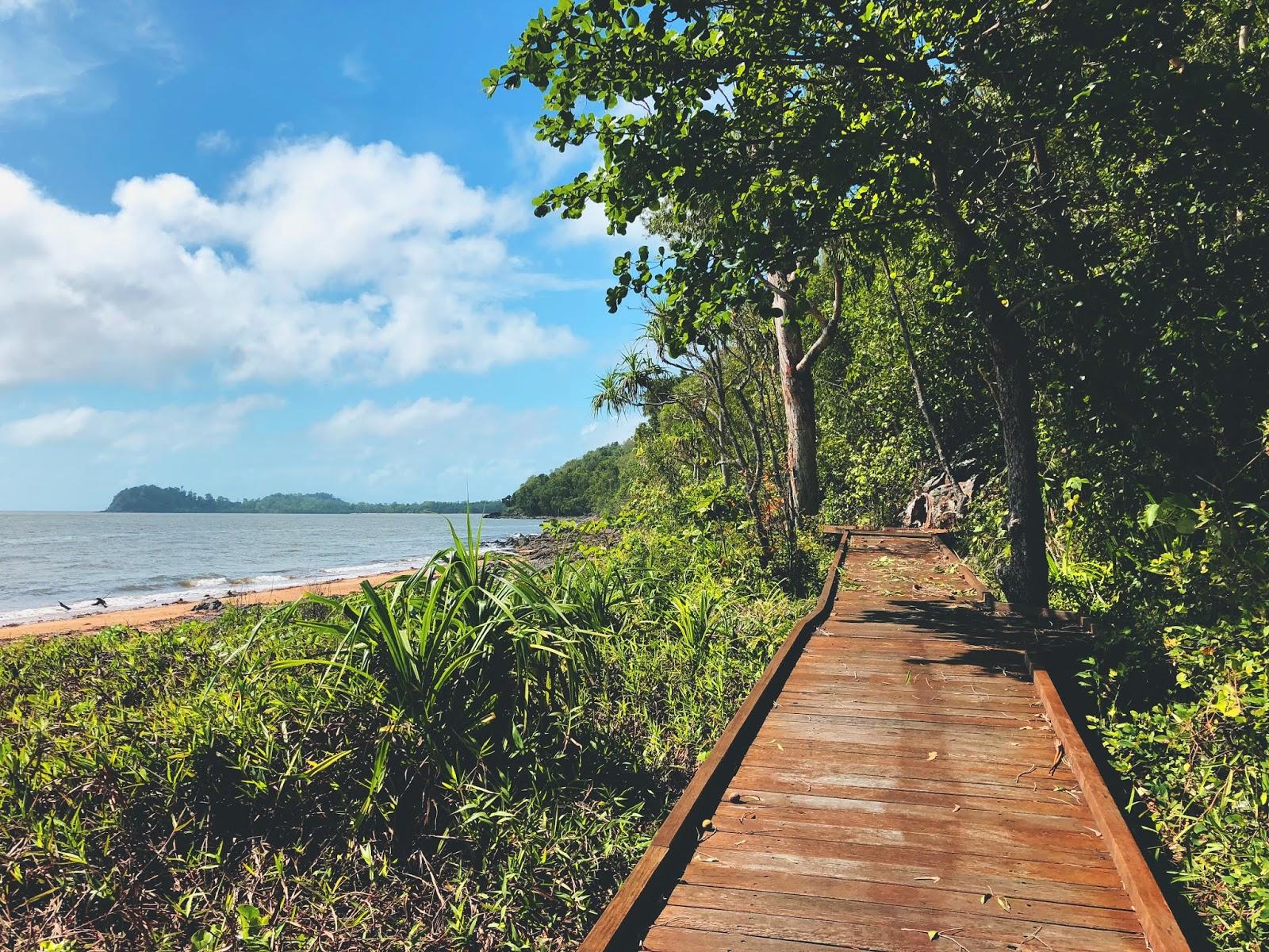 Zdjęcie drewnianej ścieżki Kennedy Walking Track w australijskim miasteczku Mission Beach. Po lewej stornie Morze Koralowe z plażą. Bujna egzotyczna roślinność przecina drogę i rośnie wzdłuż ścieżki, która znajduje się po prawej stornie.