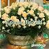 19 Μαΐου 2018 🌹🌹🌹Σήμερα γιορτάζουν οι: Πατρίκιος, Πάτρικ, Πατρίκος, Πατρίκης, Πατρίτσιος, Πατρίτσης, Πατρικία, Πατρίκα, Πατριτσία, Πατρίτσα, Θεόγνωστος, Θεογνώστης, Θεογνώσιος, Θεογνωσία, Θεόκτιστος, Μένανδρος