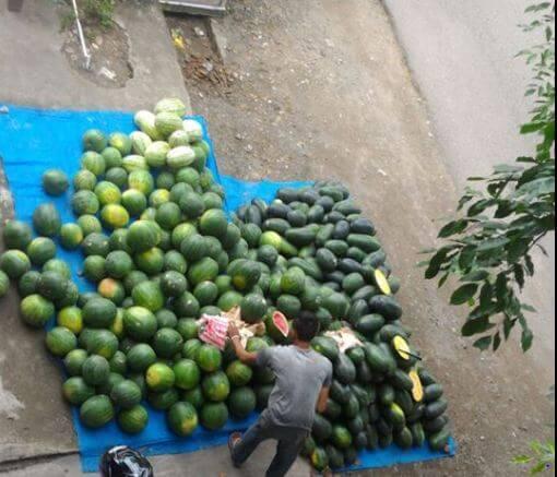 jual buah pinggir jalan