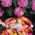 Sunday Flowers #197