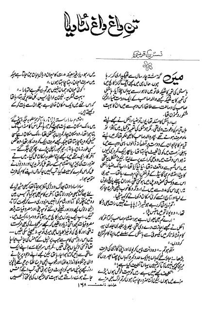 Free download Tan e dagh dagh luta diya by Nasreen Qureshi pdf
