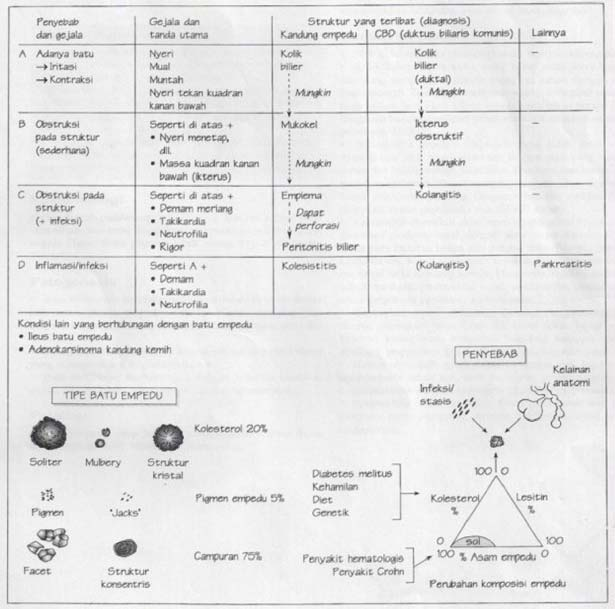 Diagram Penyakit batu empedu, gejala, tanda, sign symptoms, tipe batu dan penyebabnya, klasifikasi, pembagian, patofisiologi, patogenesis, jenis-jenis, etiologi, komposisi kolesterol, batu pigmen, batu campuran, tipeMulberry, adenokarsinoma kandung kemih, ileus, obstruksi, striktur, ikterus, kolangitis, massa kuadran kanan bawah atas