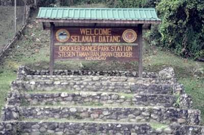 Precisely Poyong Jose S Crocker Range National Park Keningau