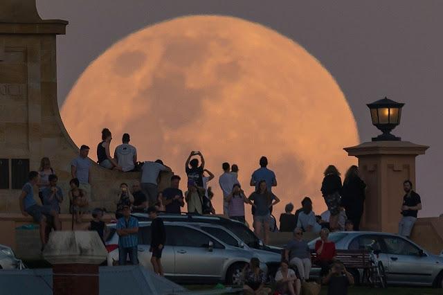 Đám đông đang quan sát Mặt Trăng mọc lên ở Đài Tưởng niệm Chiến tranh Fremantle, đồi Monument tại bang Texas. Hình ảnh này sử dụng một kỹ thuật nhiếp ảnh, mà người chụp đứng từ xa và phóng to lên, nên Mặt Trăng trông rất lớn và không đúng với thực tế. Hình ảnh: Paul Kane/Getty Images.