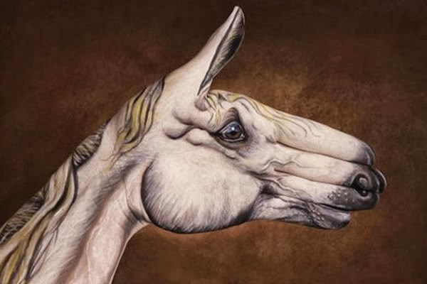 Guido Daniele, hand painting, bodypaint, animales