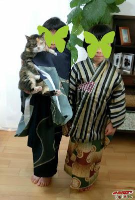 子どもアンティーク着物