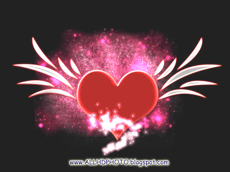 Latest 2013 New HQ Heart Wallpapers | Galerry Wallpaper