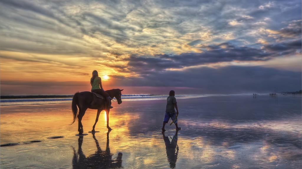 Bali Horse Riding Tour | Bali Horseback Riding Tours | Sunia Bali Tour