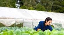 Çiftçi Olan Gence 30 Bin Hibe
