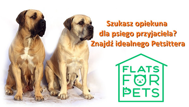 Flats For Pets