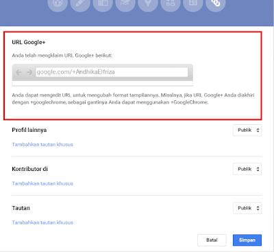 Custom Google+