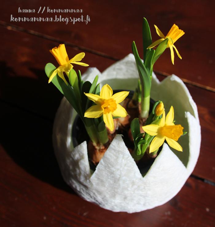 jättimuna pääsiäinen pääsiäiskoriste narsissi huhtikuu askartelu diy vessapaperi