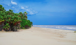 'Gurun Pasir' Khas Pantai Oetune, Timor Tengah Selatan