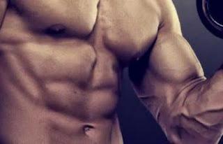 العلاقه بين الذاكره العضلية وتضخيم العضلات