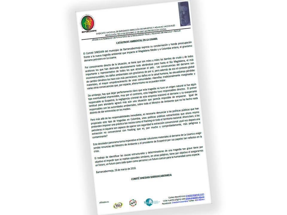 Catástrofe ambiental en La Lisama