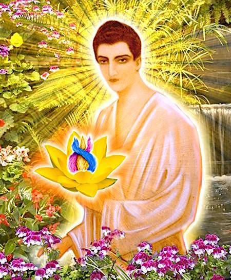 Resultado de imagen para amado gautama