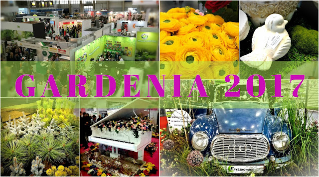 http://synergiaprzyjemnosci.blogspot.com/2017/03/gardenia-w-obiektywie-niekoniecznie.html#more