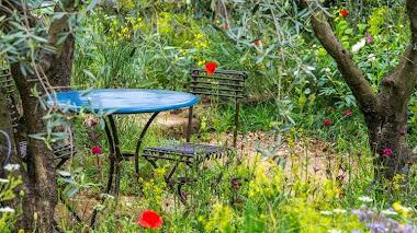 Jardines Premiados en Chelsea: A Perfumer's Garden in Grasse