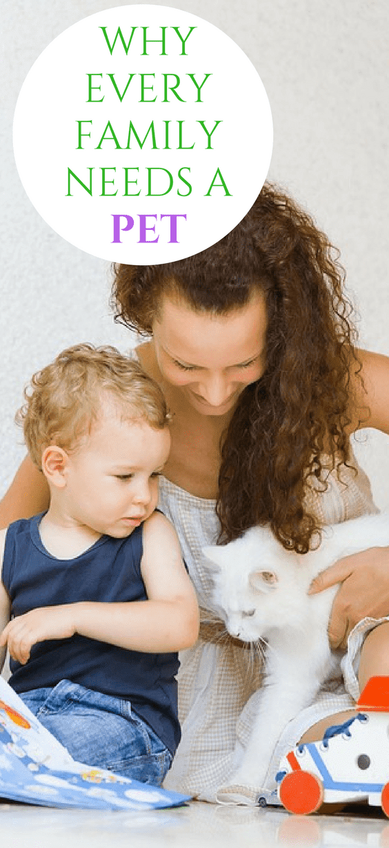 Why Every Family Needs A Pet