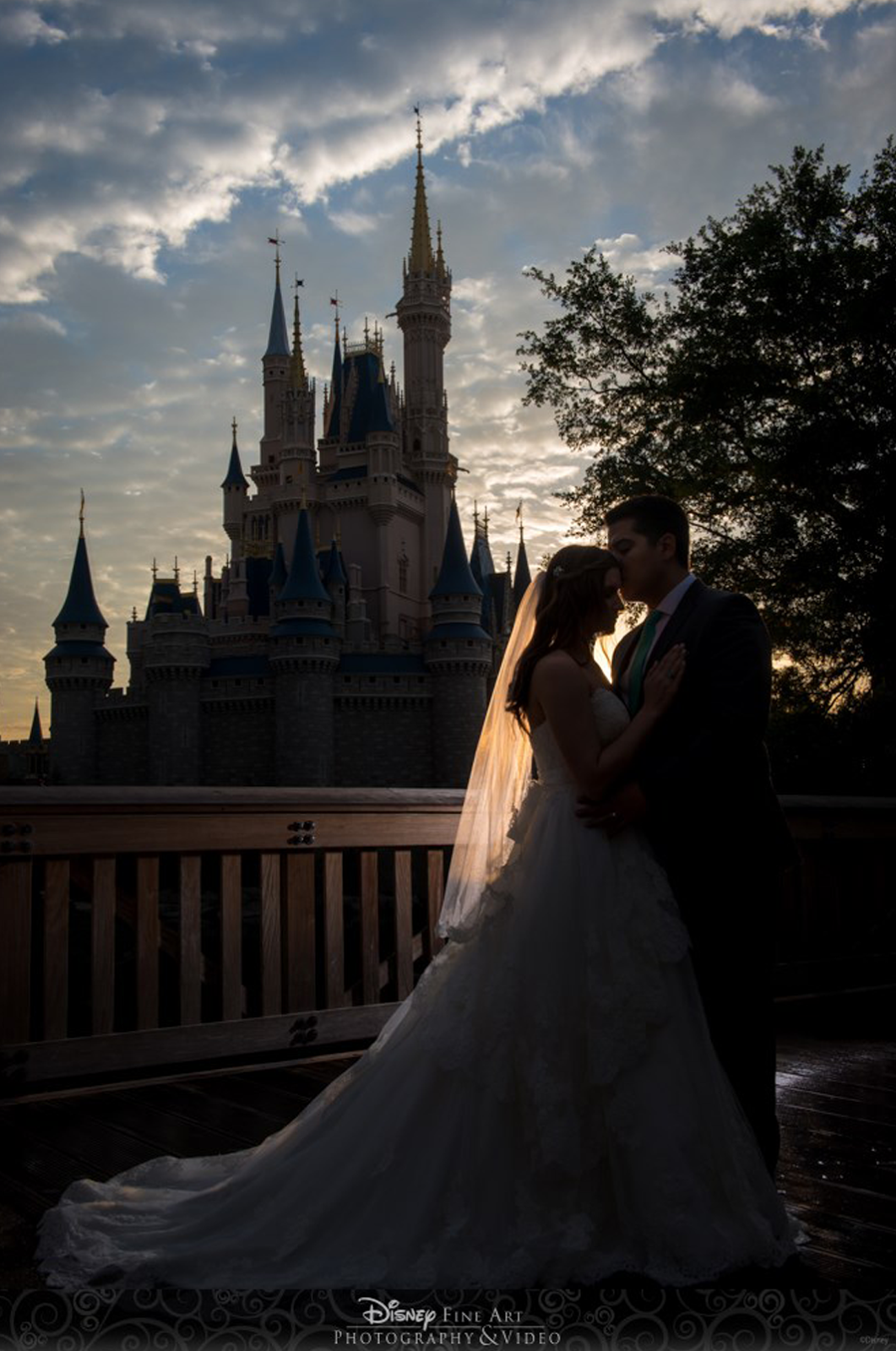 © Disney Fine Art Photography & Video