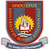 OSUSTECH Lecturers Embark On An Indefinite Strike