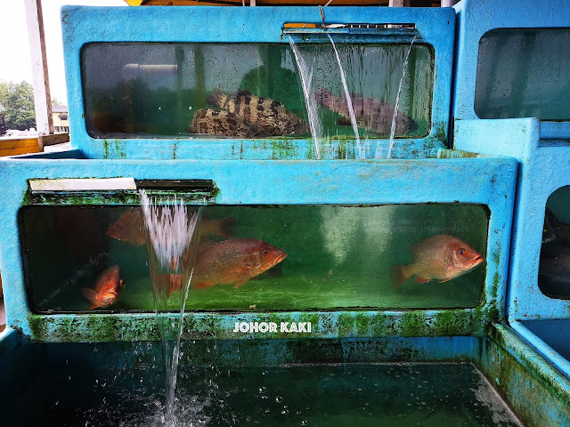 Orang Asli Seafood Mutiara Biru near Taman Perling Johor Bahru 阿士里海鲜村