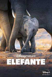 Elefante - HDRip Dual Áudio