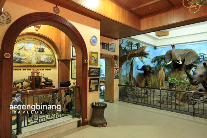 rahmat international wildlife museum gallery