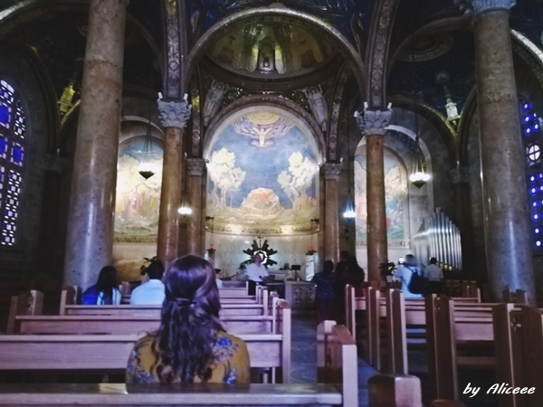 Gradina-Ghetimani-Ierusalim-impresii-obiectiv-turistic-poze