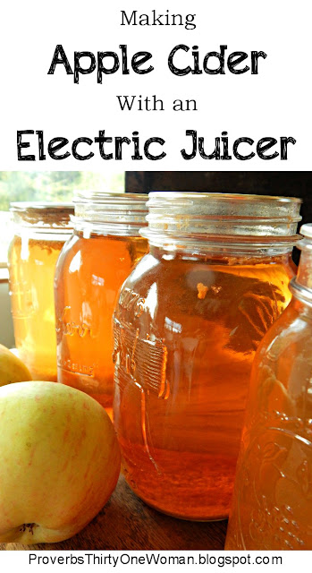 How to Make Apple Cider with an Electric Juicer