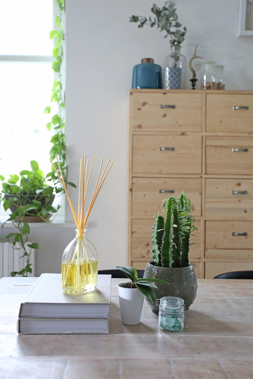 Agosto tempo di folli pulizie di casa shabby chic interiors - Tanta polvere in casa ...