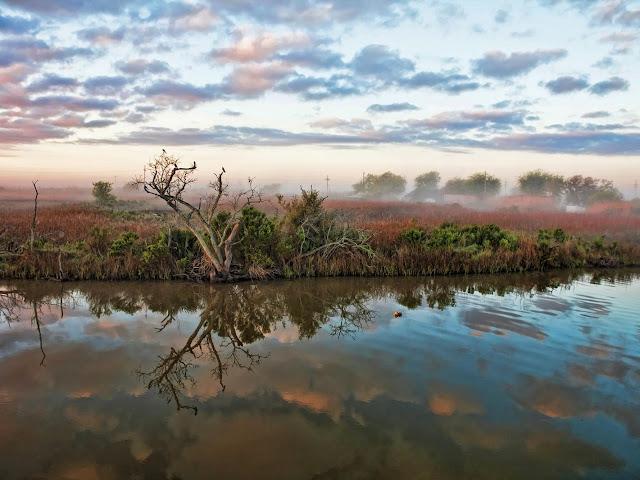 Paesaggio Louisiana